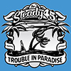 CD: The Steady 45's - Trouble In Paradise